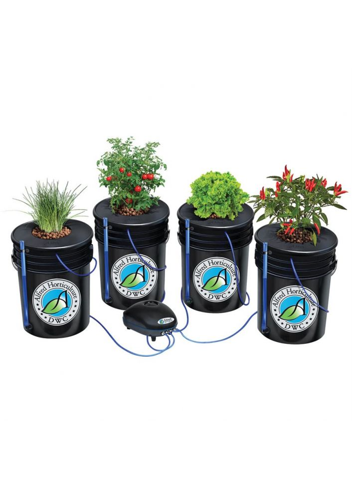 4 plants- CMH EXPERT kit 4x4 Alfred Horticulture